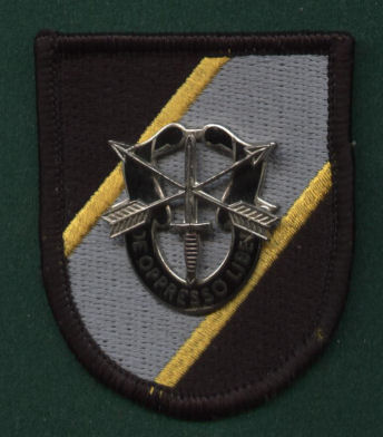 Joint Special Operations Command Beret Flash & DI